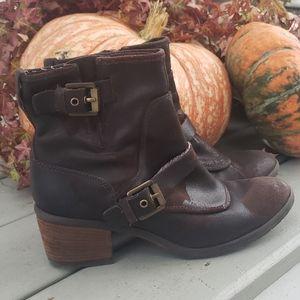 Donald Pliner Delta brown boot 9.5